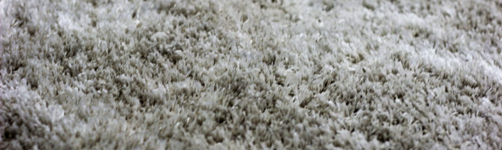 Nashville TN Carpet Cleaning